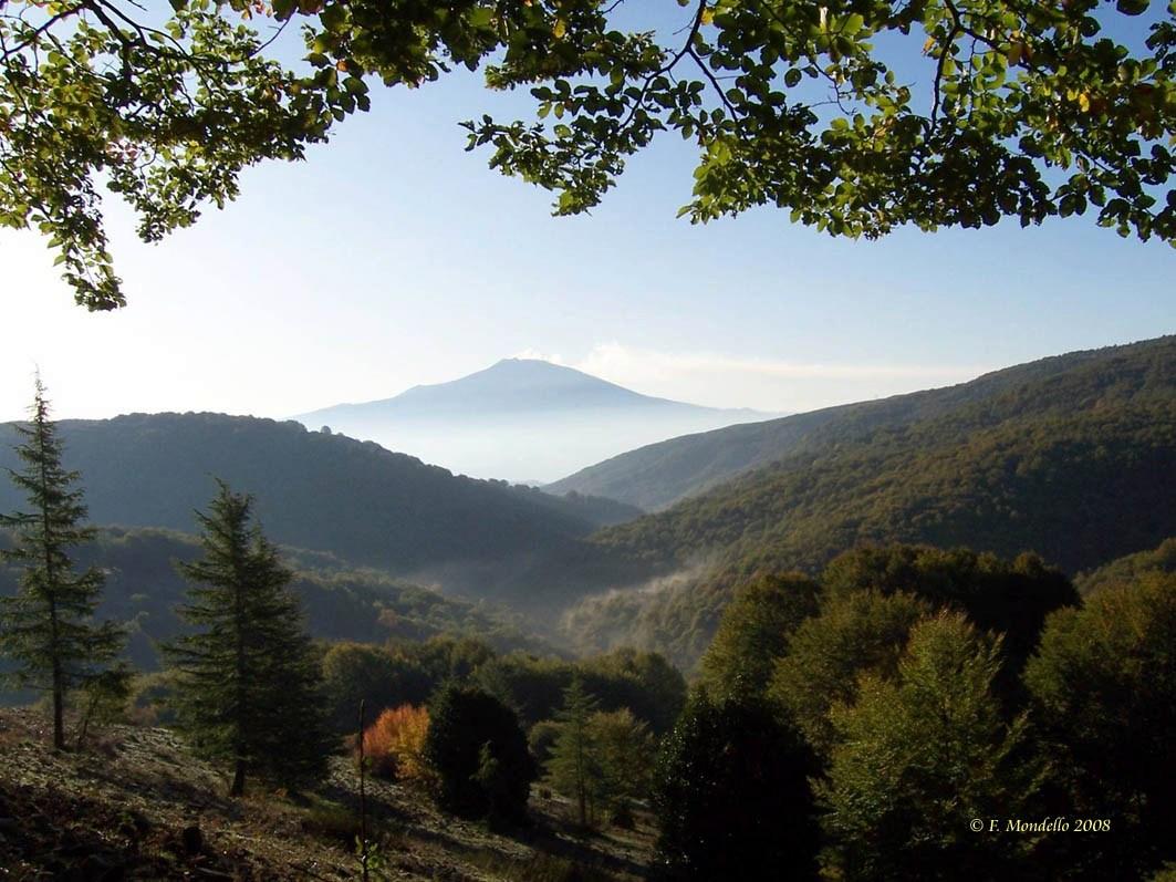 Monti Nebrodi O Caronie Descrizione E Foto Dei Nebrodi Monte Soro