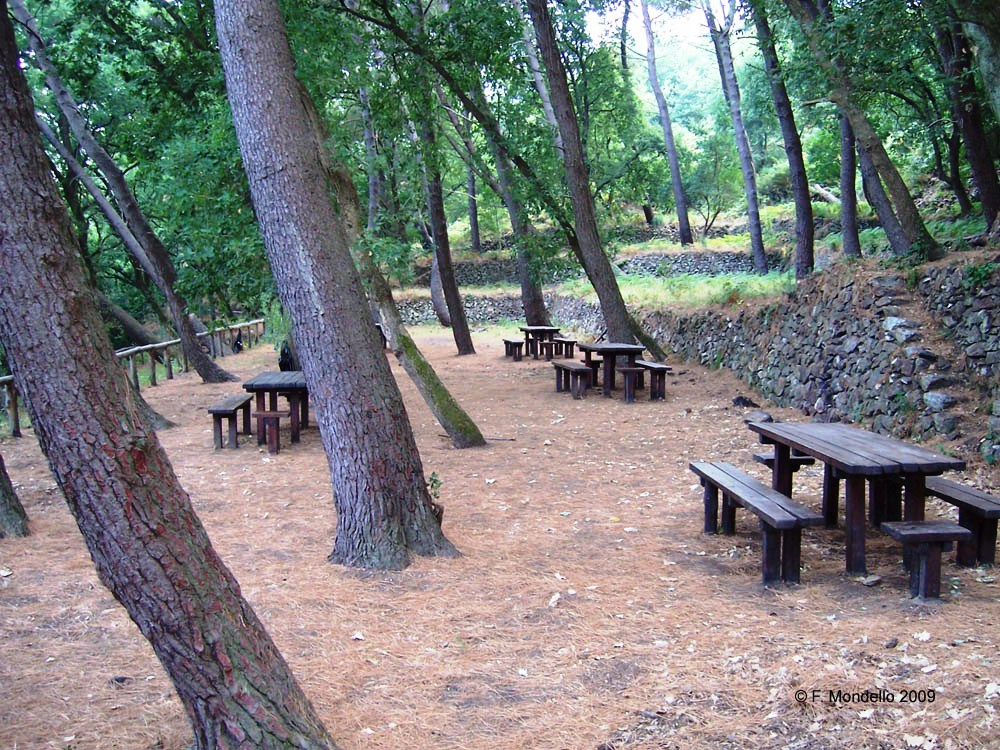 Vivaio Forestale Sicilia : I sentieri natura dellarea forestale dei peloritani. sentiero ziriò